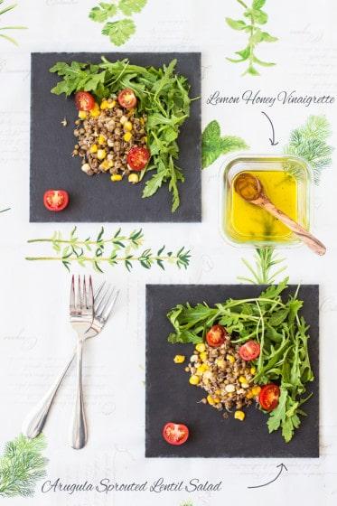 Arugula Sprouted Lentil Salad with Lemon Honey Vinaigrette