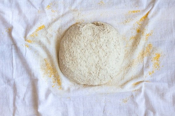 Ball of No-Knead Sesame Seed Bread dough covered in flour on a white cotton towel.