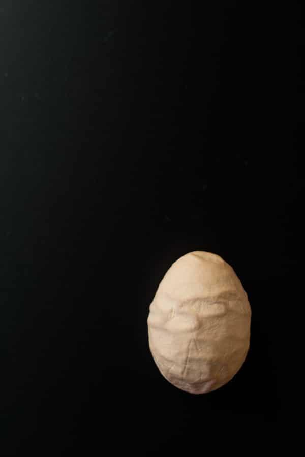 Brown egg on black background.
