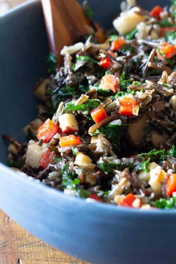 Closeup texture of mixed wild rice salad.