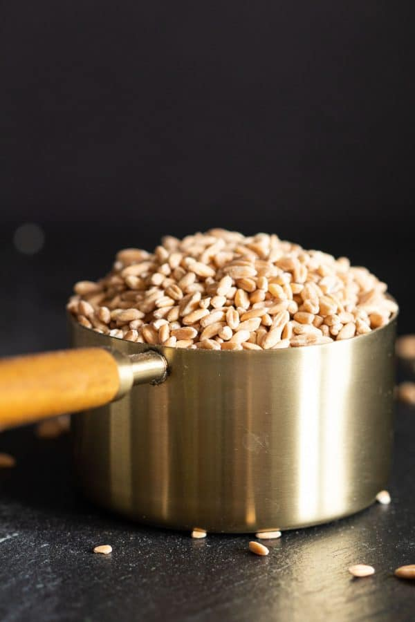 raw farro in a golden measuring cup