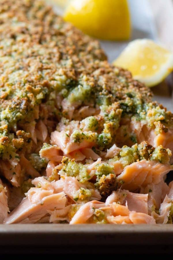 Closeup of baked salmon with almond flour parmesan crust