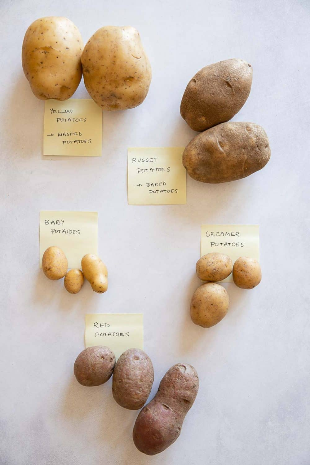5 different types of potatoes labeled with post-its. Yellow-fleshed, Russet, red, creamer, fingerling. instant pot boiled potatoes